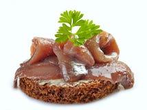 Bruine broodsandwich met ansjovissen stock afbeelding