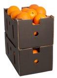 Bruine die doos met verse sinaasappelen wordt gevuld stock foto