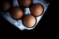 Bruine die kippeneieren op een zwarte achtergrond worden geïsoleerd Royalty-vrije Stock Afbeelding