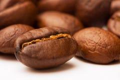Bruine die koffiebonen op wit worden geïsoleerd Stock Foto's