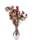 Bruine droog nam bloem met blad toe Het schot van de studio dat op wit wordt geïsoleerda Stock Afbeeldingen
