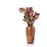 Bruine droog nam bloem met blad toe Het schot van de studio dat op wit wordt geïsoleerda Royalty-vrije Stock Afbeelding