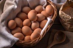 Bruine eieren royalty-vrije stock foto