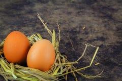 Bruine eieren in de eieren van de nestkip Royalty-vrije Stock Afbeelding