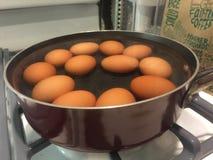 Bruine eieren die op fornuisbovenkant koken Stock Foto