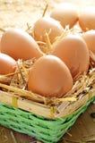 Bruine eieren in een mand Stock Afbeelding