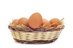 Bruine eieren in een mand Royalty-vrije Stock Afbeeldingen