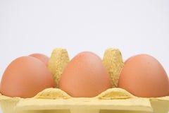 Bruine Eieren in het Karton van het Karton stock afbeelding