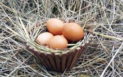 Bruine eieren in houten kom Stock Afbeelding