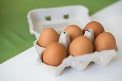 Bruine eieren in karton Close-upmening van ruwe kippeneieren Concept voedsel en organische landbouwproducten Stock Afbeelding