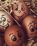 Bruine eieren met grappige gezichten Stock Foto