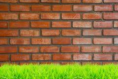 Bruine en rode bakstenen muren met groene grasachtergrond stock afbeeldingen