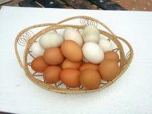 Bruine en witte eieren Stock Fotografie