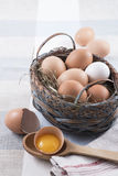 Bruine en witte eieren in de stijl van het mandland Royalty-vrije Stock Fotografie