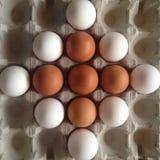 bruine en witte eieren in een cel Stock Afbeelding