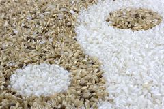 Bruine en witte rijst Royalty-vrije Stock Foto