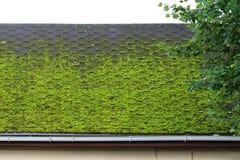 bruine flexibele die tegel op het dak van het huis, prachtig met groen mos wordt overwoekerd Zacht dak, daktegels Flexibele daksp stock afbeelding