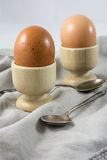Bruine gekookte eieren in eierdopjes met lepels Royalty-vrije Stock Foto's