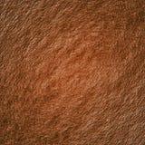 Bruine geweven achtergrond Stock Afbeelding