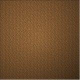 Bruine geweven kleur van hagedis Royalty-vrije Stock Afbeeldingen
