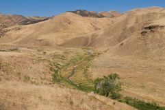 Bruine heuvels Stock Afbeeldingen