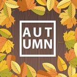 Bruine houten achtergrond met herfstbladeren stock illustratie