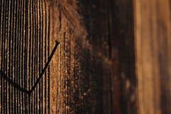 Bruin hout met roestige spijker Stock Foto