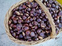Bruine kastanjes in een mand Royalty-vrije Stock Foto