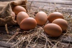 Bruine kippeneieren royalty-vrije stock afbeelding