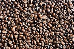 Bruine koffie, bruine koffie Koffie stock foto