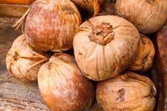 Bruine kokosnoot Royalty-vrije Stock Foto's