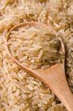 Bruine lange rijst Royalty-vrije Stock Afbeelding
