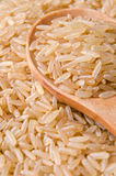 Bruine lange rijst Royalty-vrije Stock Afbeeldingen