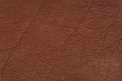 Bruine leeroppervlakte Royalty-vrije Stock Afbeeldingen