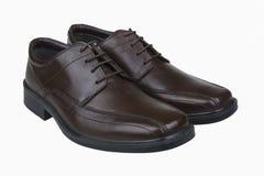 Bruine man schoenen Royalty-vrije Stock Foto's