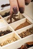 Bruine manicure Royalty-vrije Stock Foto's