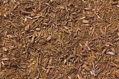 Bruine muls met een aanraking van rood Stock Foto's