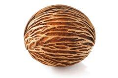 Bruine noten op witte achtergronden Royalty-vrije Stock Afbeeldingen