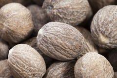 Bruine nutmegs Royalty-vrije Stock Foto