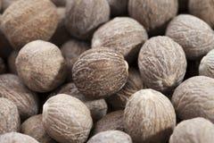 Bruine nutmegs Stock Afbeeldingen