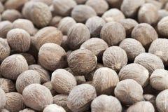 Bruine nutmegs Royalty-vrije Stock Afbeelding