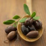 Bruine olijven Royalty-vrije Stock Foto's