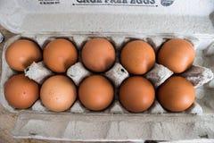 Bruine Organische Eieren in Karton royalty-vrije stock afbeelding