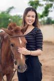 Bruine poney Stock Foto's