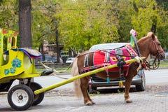 Bruine poney met vervoer met fouten voor kinderen in stadsstraat Stock Foto
