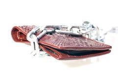 Bruine portefeuille met een ketting Stock Afbeelding