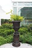 Bruine pot met varen royalty-vrije stock fotografie