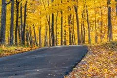 Bruine Provincie Autumn Road Stock Foto