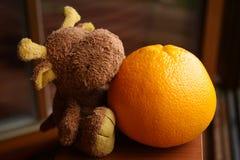 Bruine rendier & sinaasappel stock afbeeldingen