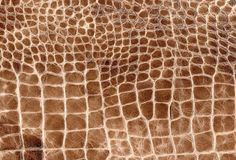 Bruine reptiel natuurlijke leertextuur Slang, krokodil of draakhuidpatroon royalty-vrije stock afbeelding